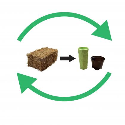 Schematisch plaatje biobased productie