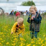 Foto met kinderen in een geel bloemenveld